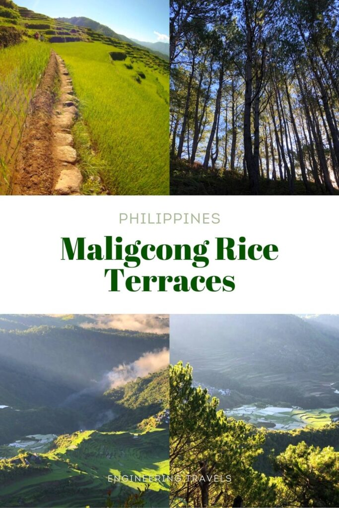 Maligcong Rice Terraces, Philippines